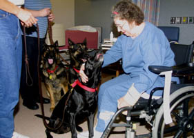 Dogs visit at Rusk Hospital photo by Hank Beck