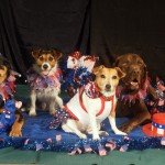 Gracie, Rueben, Emmy Lu and Toby, all dressed for the July 4 holiday.